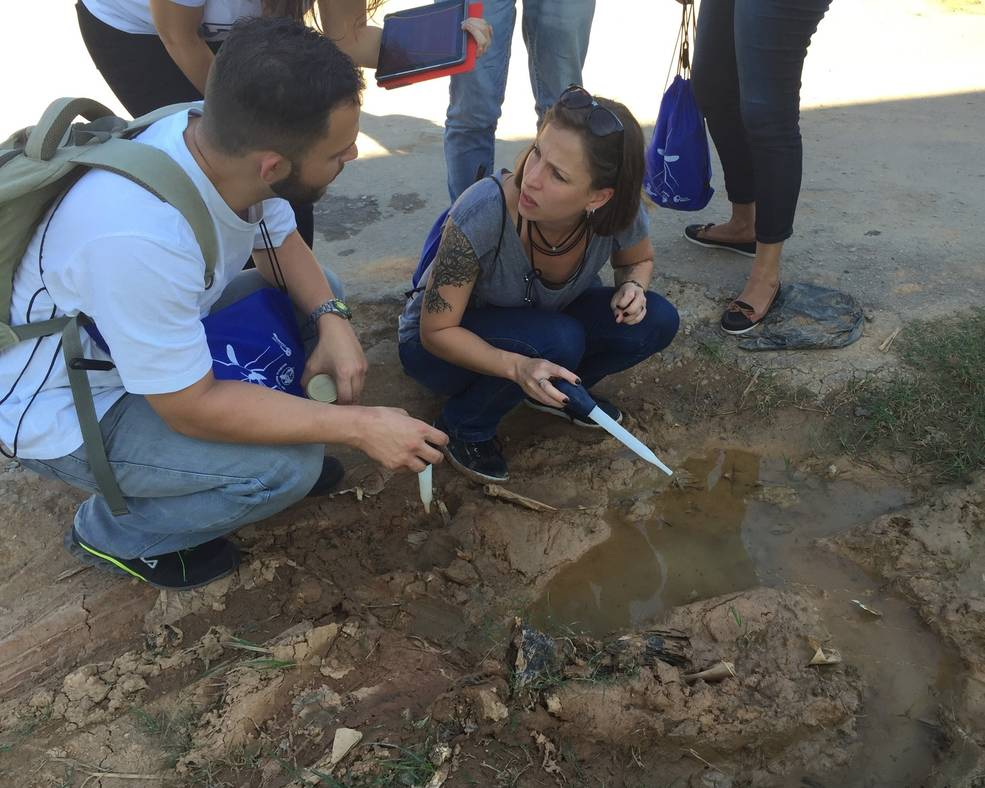 Educators in Brazil use the Mosquito Habitat Mapper to sample mosquito larvae in a tire track puddle.